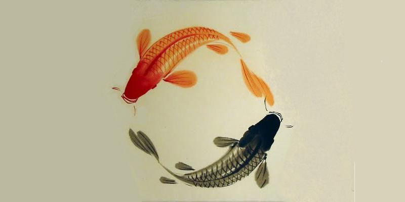 fishes-yin-yang-opti2