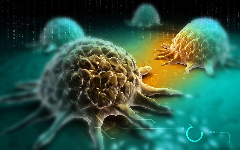 cancer cellls