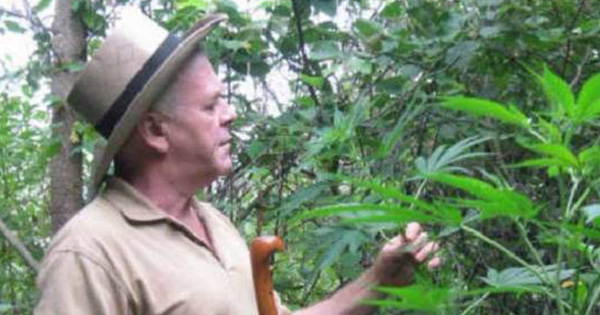"Cannabis is Medicine! Rick Simpson's Cancer-Busting ""High THC"" Cannabis Oil Recipe"