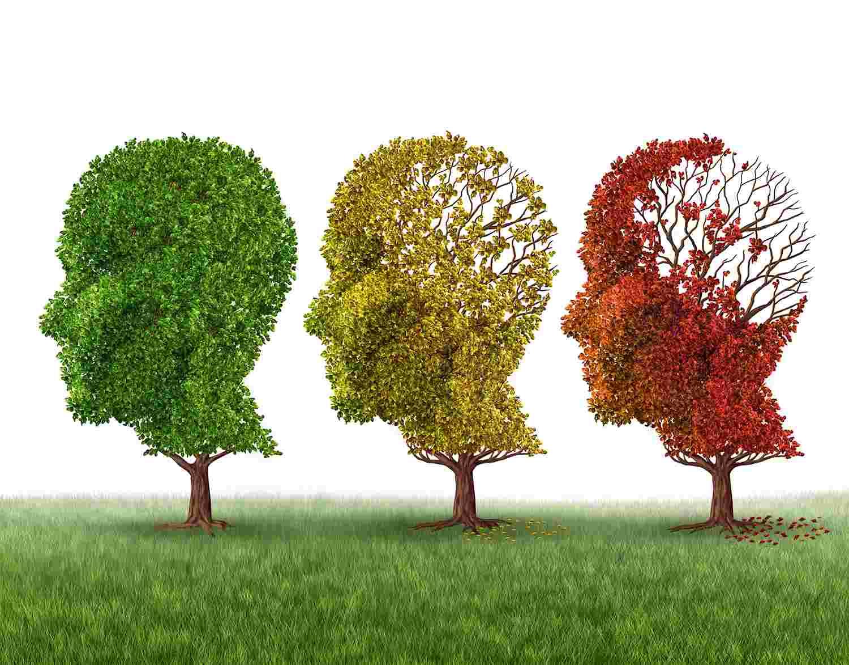 memory loss alzheimer's dementia