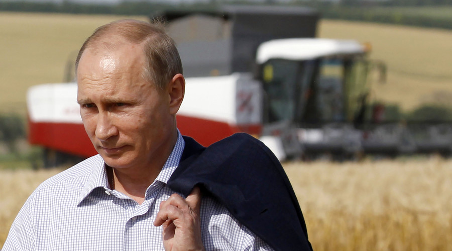 Russian President Vladimir Putin walking in fields