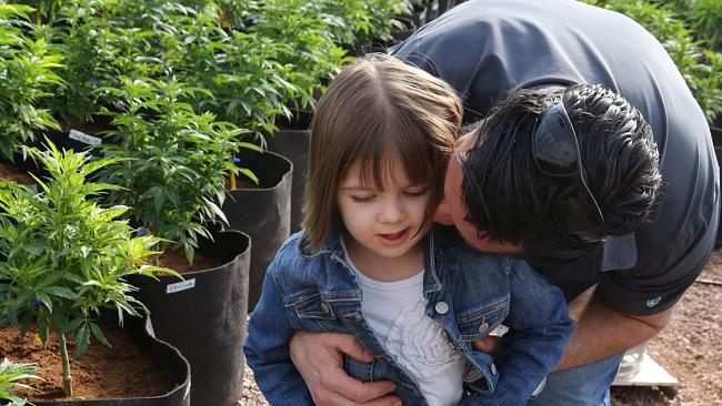 charlotte figi heals from cannabis