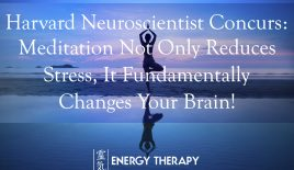 Harvard neuroscientist concurs: Meditation not only reduces stress, it fundamentally changes your brain!