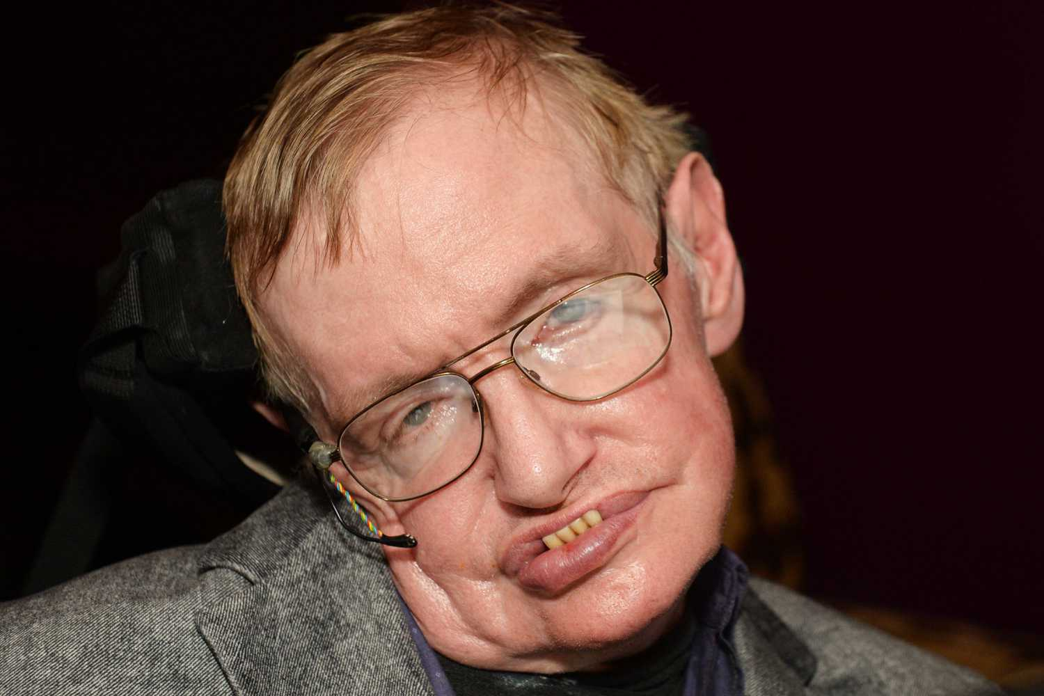 theoretical physicist stephen hawking