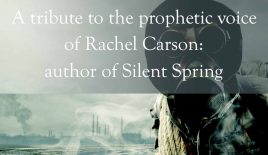 A tribute to the prophetic voice of Rachel Carson – author of Silent Spring