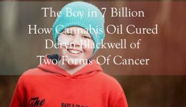 The Boy in 7 Billion – How Cannabis Oil Cured Deryn Blackwell of Two Forms of Cancer
