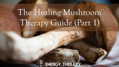 the healing mushroom therapy guide: chaga and cordyceps