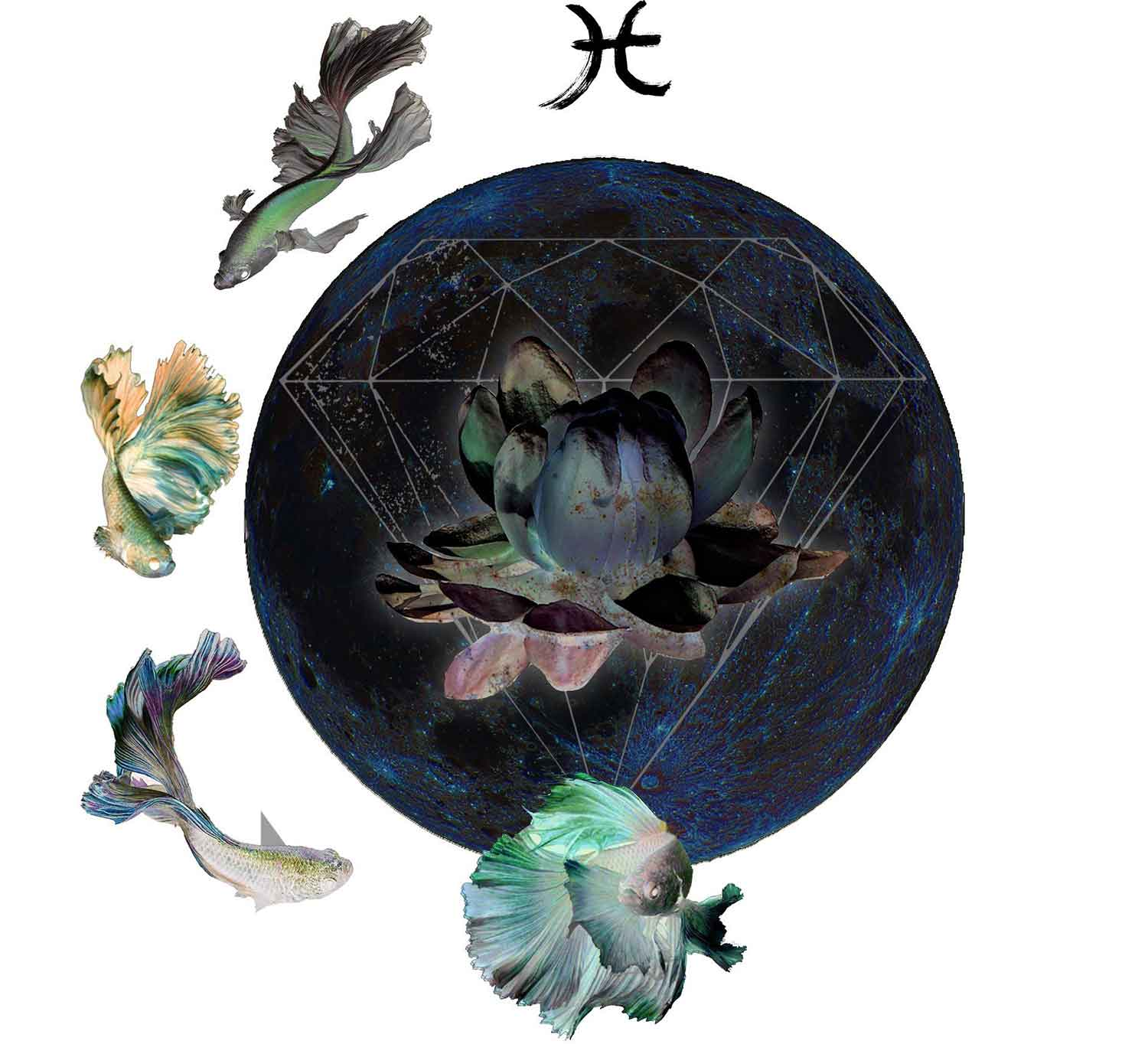 Intuitive Astrology: March New Moon 2019