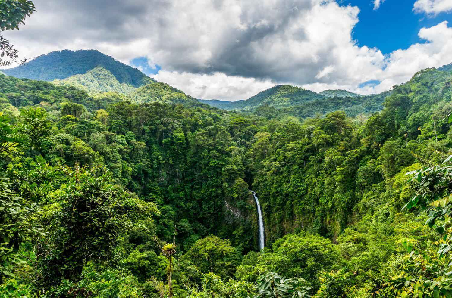 Costa Rica Doubled Its Forest Cover In Just 30 Years!