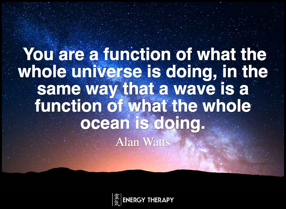 You are a function of what the whole universe is doing, in the same way that a wave is a function of what the whole ocean is doing. ~ Alan Watts