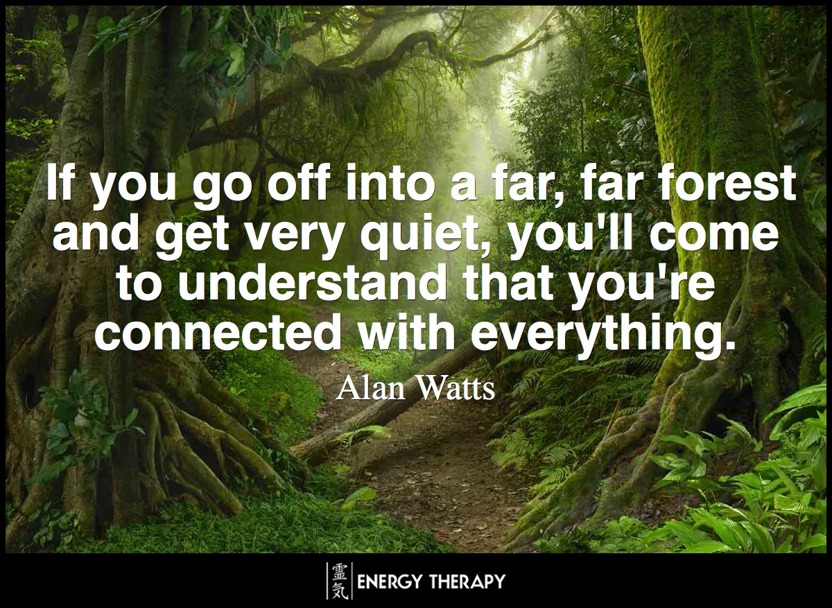 I'll tell you what hermits realize. If you go off into a far, far forest and get very quiet, you'll come to understand that you're connected with everything. ~ Alan Watts
