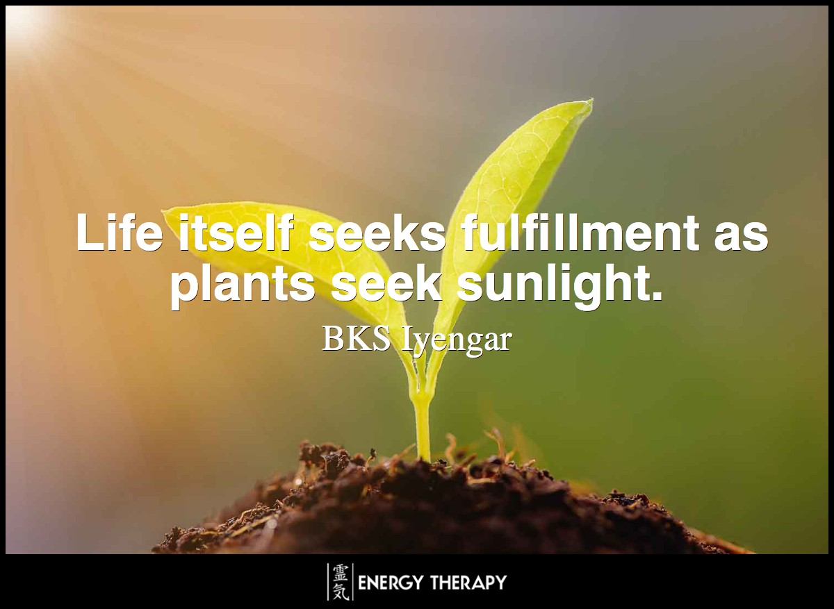 Life itself seeks fulfillment as plants seek sunlight.