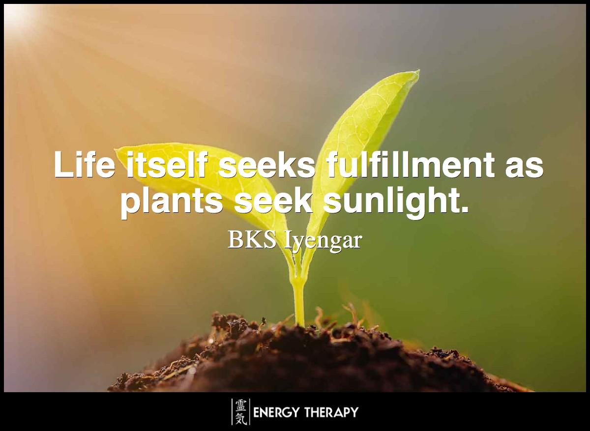 Life itself seeks fulfillment as plants seek sunlight.