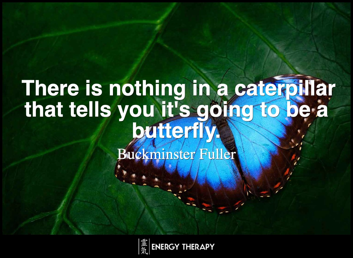 There is nothing in a caterpillar that tells you it's going to be a butterfly.