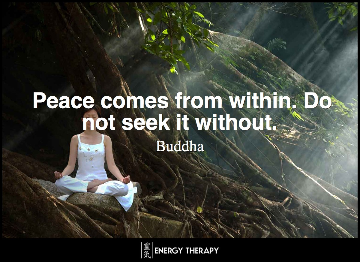 Peace comes from within. Do not seek it without. ~ Buddha