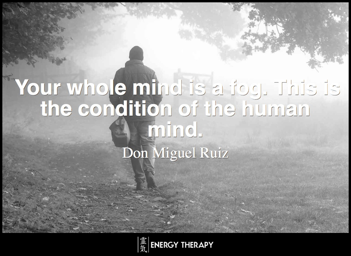 Your whole mind is a fog. This is the condition of the human mind. ~ Don Miguel Ruiz