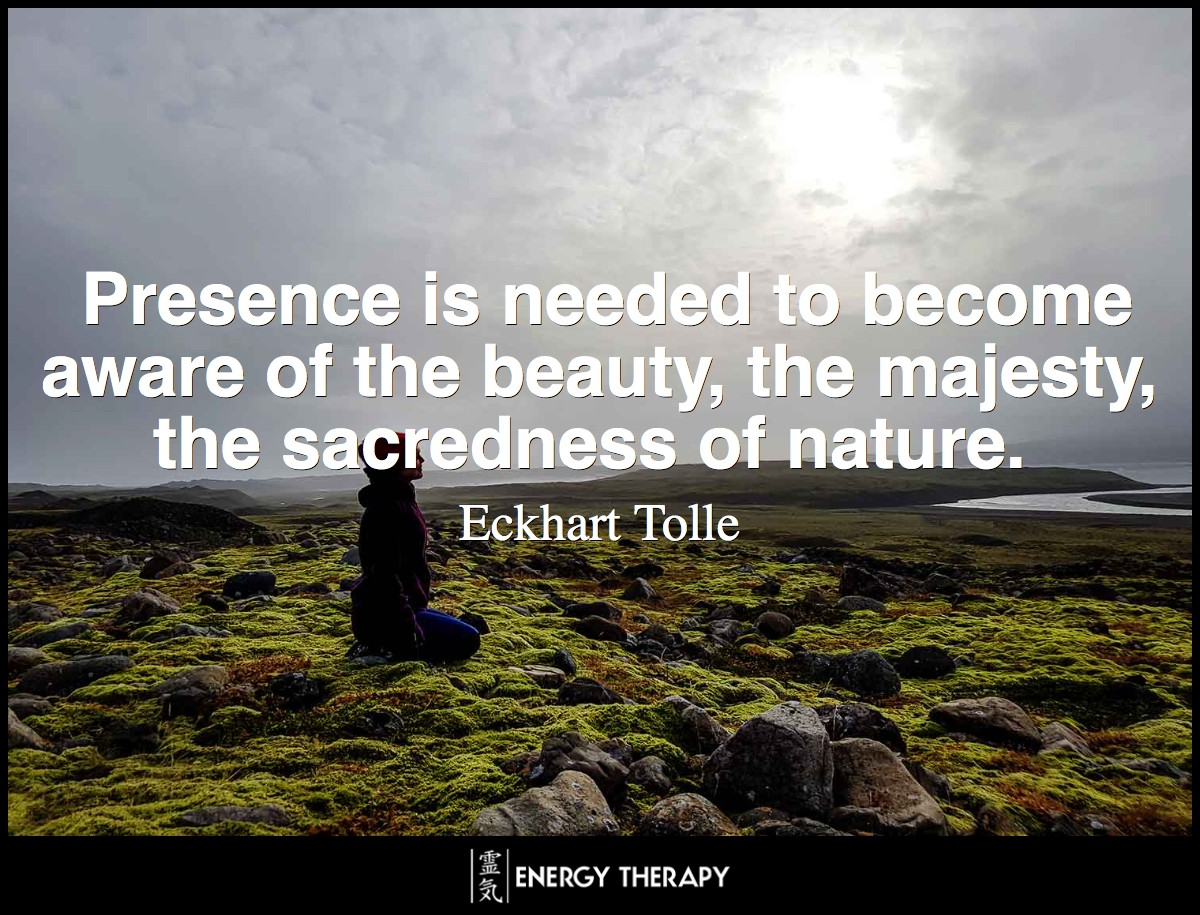 Presence is needed to become aware of the beauty, the majesty, the sacredness of nature.