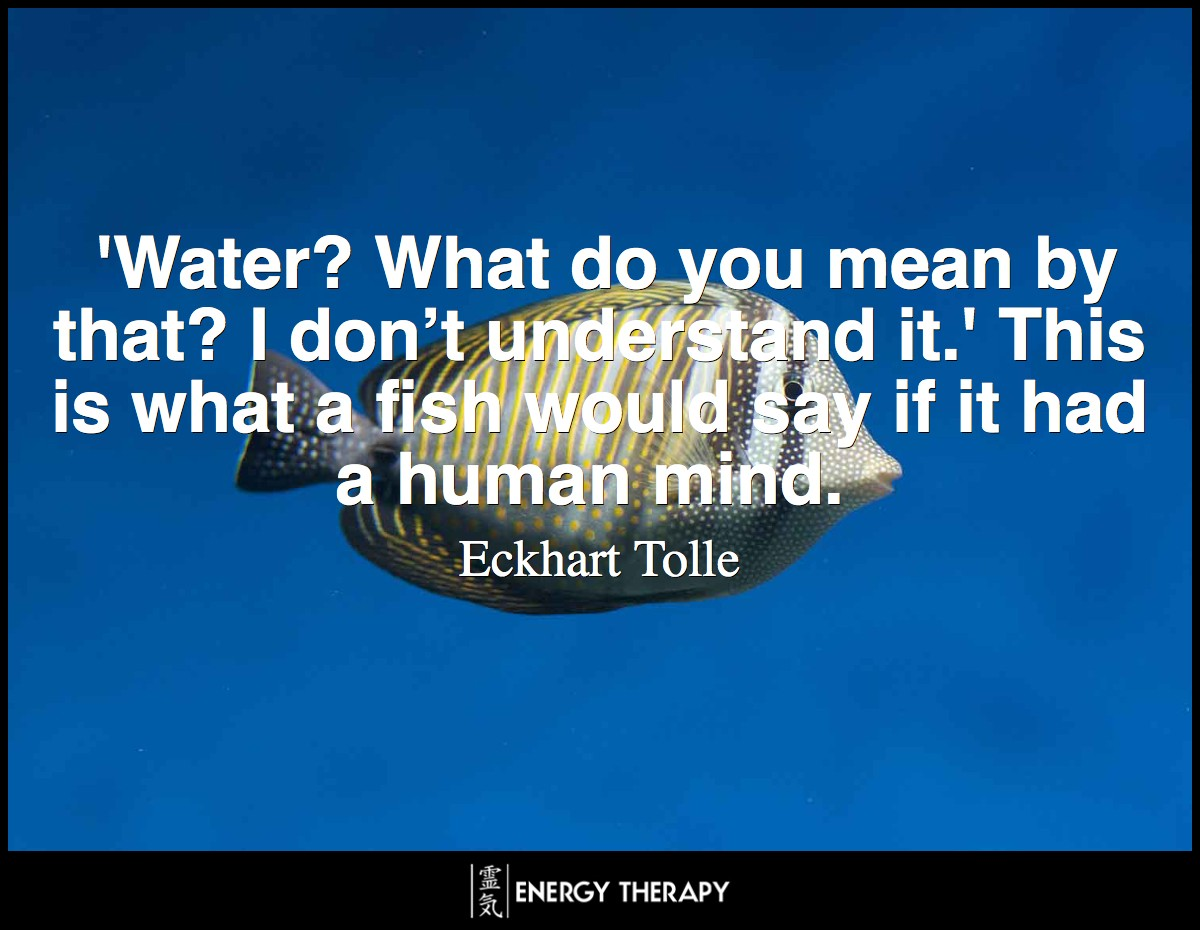 'Water? What do you mean by that? I don't understand it.' This is what a fish would say if it had a human mind.