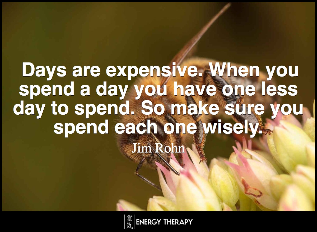 Days are expensive. When you spend a day you have one less day to spend. So make sure you spend each one wisely. ~ Jim Rohn
