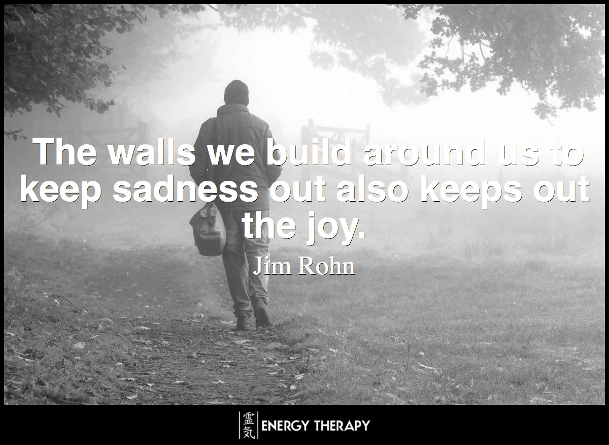 The walls we build around us to keep sadness out also keeps out the joy. ~ Jim Rohn