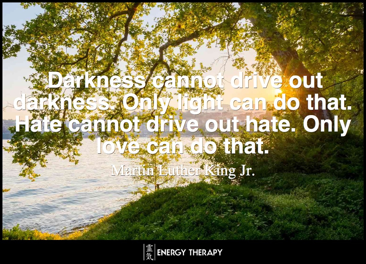 Darkness cannot drive out darkness. Only light can do that. Hate cannot drive out hate. Only love can do that.