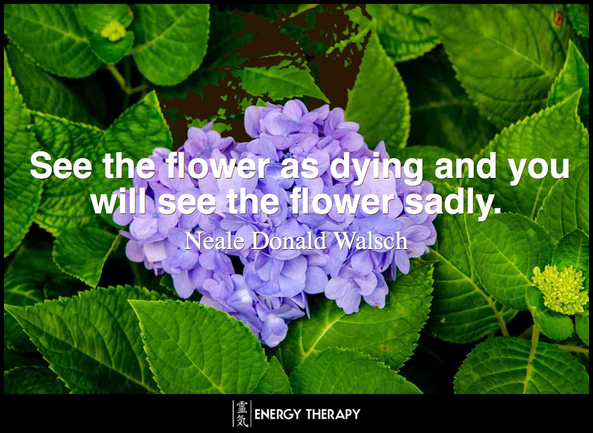 See the flower as dying and you will see the flower sadly. Yet see the flower as part of a whole tree that is changing, and will soon bear fruit, and you see the flower's true beauty. ~ Neale Donald Walsch
