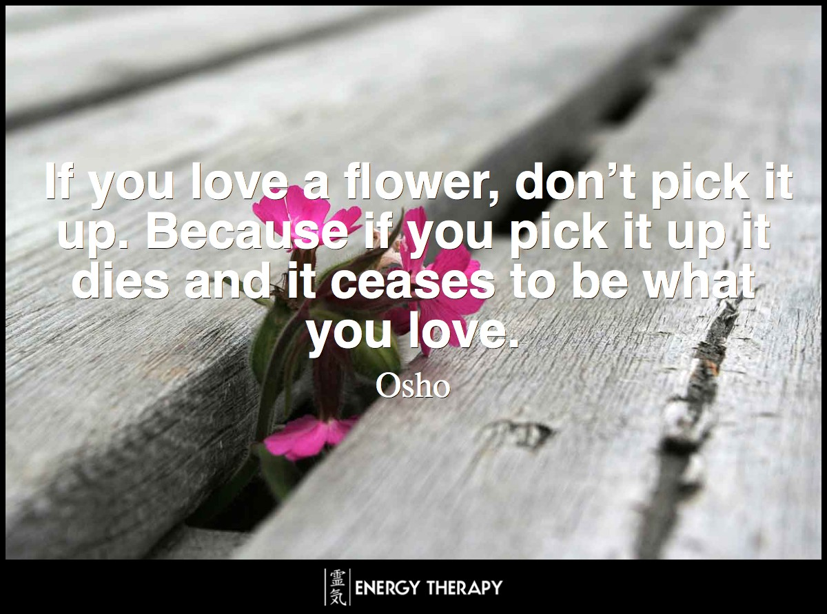 If you love a flower, don't pick it up. Because if you pick it up it dies and it ceases to be what you love. ~ Osho