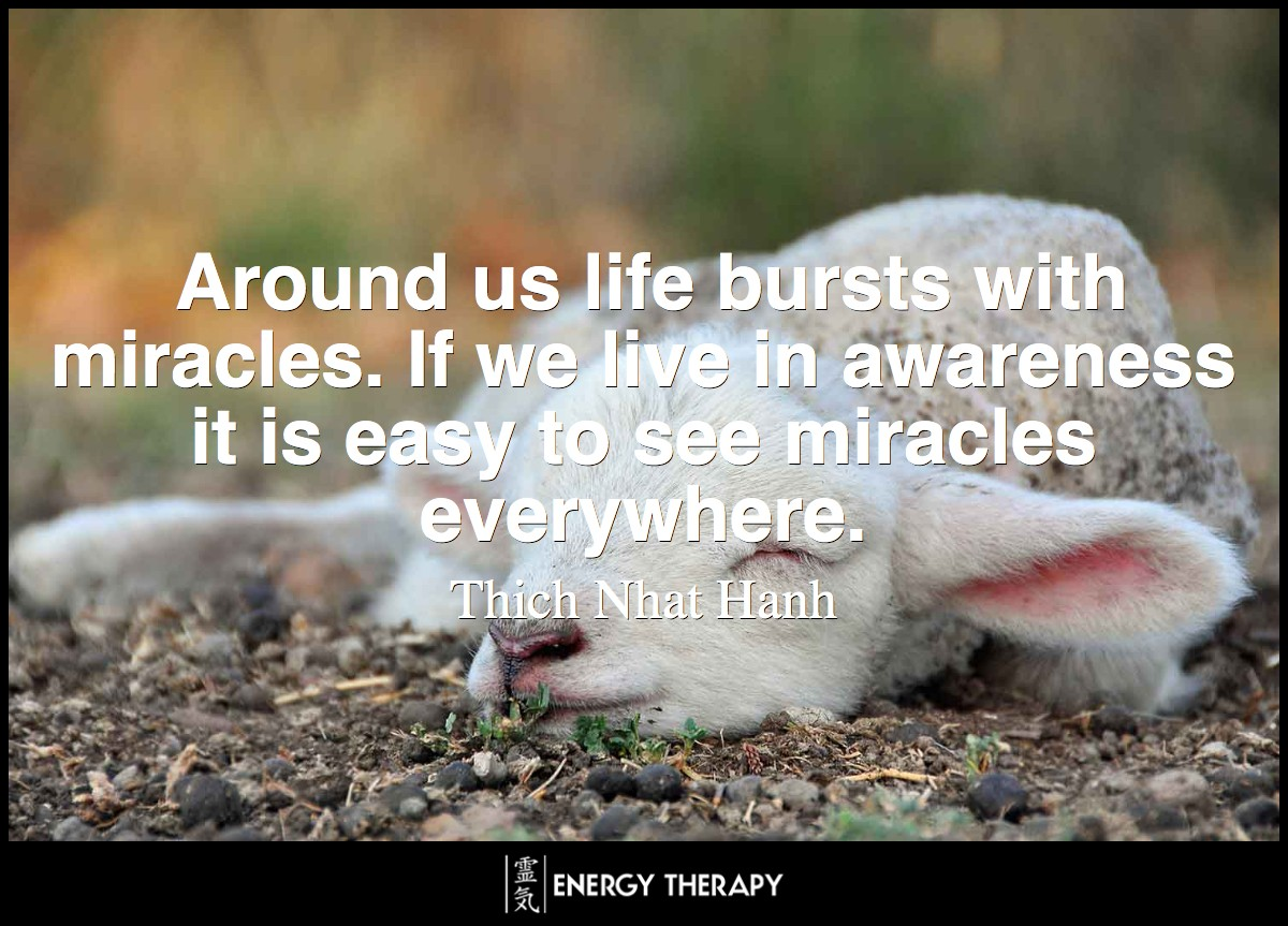 Around us life bursts with miracles. If we live in awareness it is easy to see miracles everywhere. ~ Thich Nhat Nanh